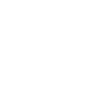 Elephant and Castle Handyman